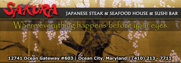 Roving Restaurant Review for Sakura