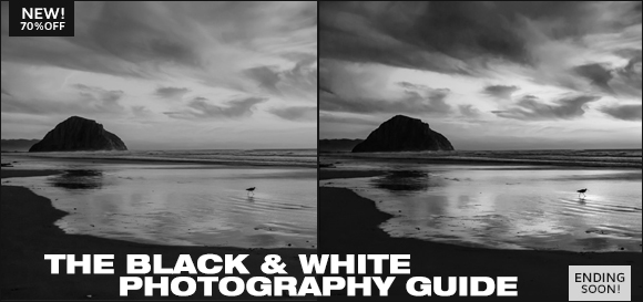 THE BETTER BLACK & WHITE PHOTOGRAPHY GUIDE