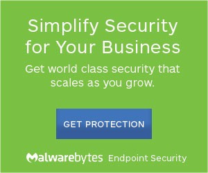 Malwarebytes Whitepaper Advert